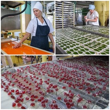 технология желейных конфет